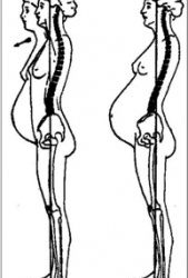 Physical Therapy Provides a Natural and Effective Alternative to Pain during Pregnancy By Dr. Alanna Pokorski, PT DPT