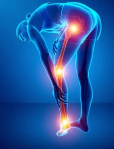 Board Certified Orthopedic Clinical Specialist